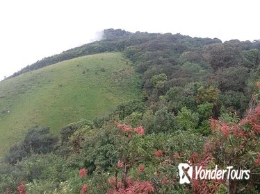 Small-Group Doi Inthanon National Park and Kiew Mae Pan Trail from Chiang Mai