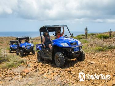 Small-Group Half-Day UTV Adventure Morning Tour in Aruba