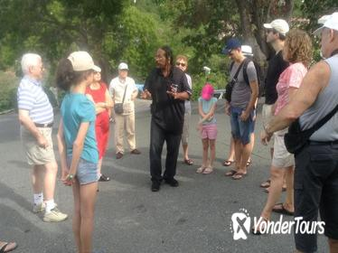 St Thomas Shopping and Sightseeing Half-Day Tour