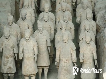 Terracotta Warriors Express Day Tour Including Lunch
