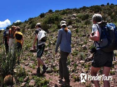 Trekking and Rappel to Quebrada del Salto Fall, from Mendoza