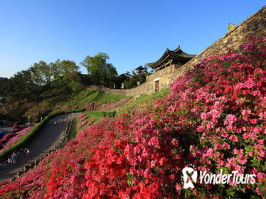 Western Korea 4-Day Tour Including Jeonju and Yeosu