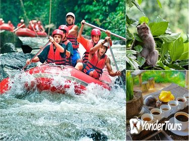 White Water Rafting with Ubud Monkey Forest Tour