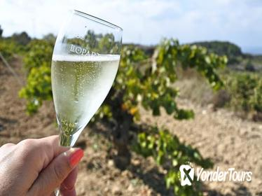 Wine and Cava Tour from Barcelona with Tastings and Brunch