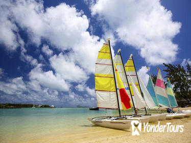 Full-Day Benitiers Island and Dolphin Watching Cruise with Lunch