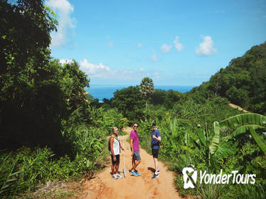 Tour to Big Buddha and Jungle Trek with Lunch in Phuket