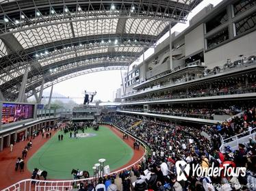 Hong Kong Horse Racing Tour