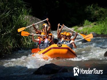 Bali Rafting, Ubud, and Jimbaran Day Tour