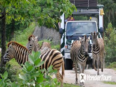 BALI SAFARI MARINE PARK AND JIMBARAN DAY TOUR
