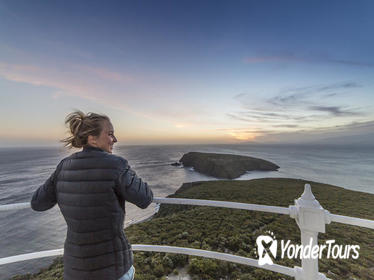 Bruny Island Sightseeing and Gourmet Tour from Hobart Including Guided Lighthouse Tour