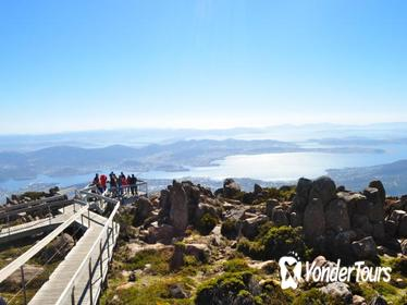 Mount Wellington and Tasmanian Devil Day Trip from Hobart