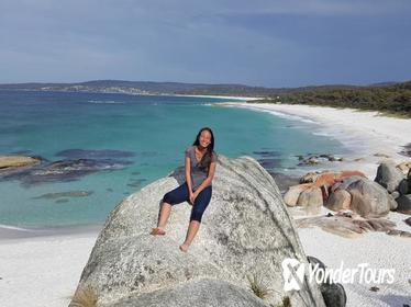 5-Day Best of Tasmania Tour from Hobart