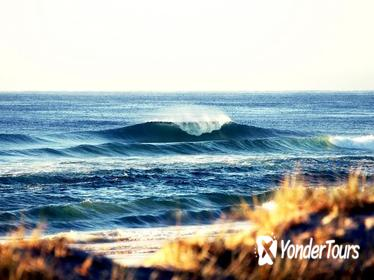 7-Day Byron Bay, Evans Head and Moonee Beach Surf Safari from Brisbane, Gold Coast or Byron Bay