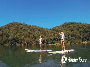 Ku-ring-gai Chase National Park Stand Up Paddleboard Tour