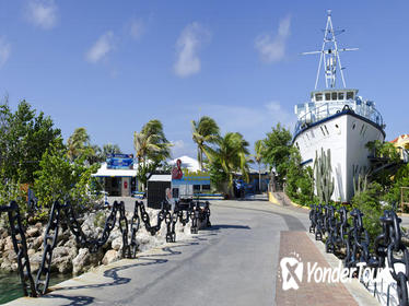 Week Pass at Curacao Public Sea Aquarium