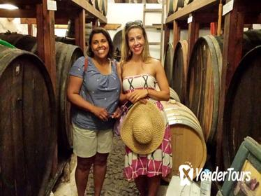 Ancient Akrotiri and Santorini Wineries Tour