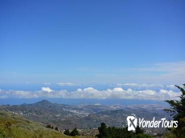 Gran Canaria Peaks Full-Day Tour from Las Palmas