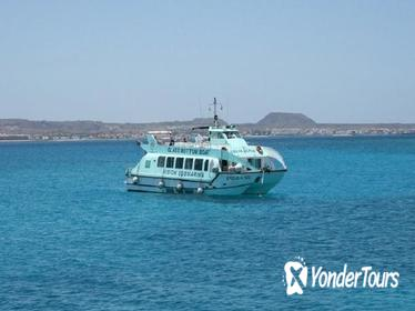 Fuerteventura, Lanzarote, and Los Lobos Glass Bottom Catamaran Cruise with Lunch