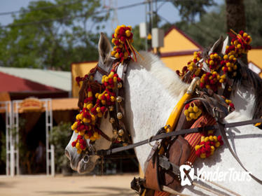 Cadiz Shore Excursion: Small Group Cadiz Sightseeing Tour, Jerez Horse Show and Sherry Tasting