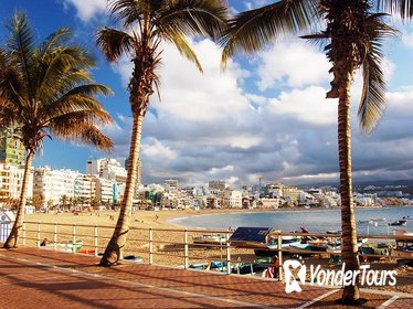 Guided Tour of Las Palmas including Botanic Garden and Volcano