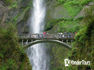 Morning Half-Day Multnomah Falls and Columbia River Gorge Waterfalls Tour from Portland