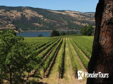 Full Day Columbia River Gorge Waterfalls and Wine Tasting Combo
