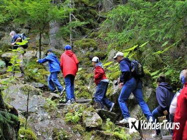 Skagway Shore Excursion: Chilkoot Trail Hike and Float Tour