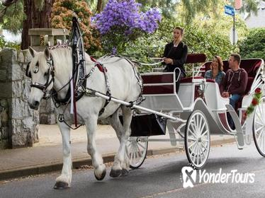 30-Minute Heritage Horse-Drawn Carriage Tour