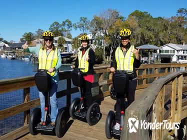 The New Perspective Manatee Tour, See The Manatee - Crystal River Segway Tours