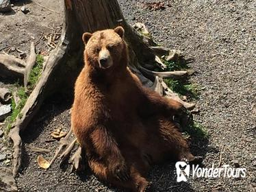 Sitka Fortress of the Bear, Brew & Scenic Tour