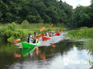 Lake Gatun Boat Tour Including Kayaking and Lunch