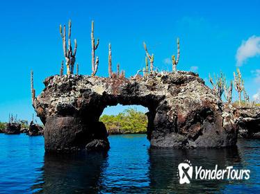 8-Days Galapagos Islands Highlights Tour (2019)