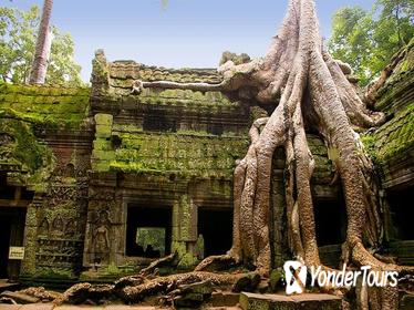 Angkor Wat Two Days Tour with Lunch and Dinner, Apsara Show