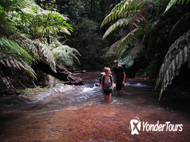 5-Day Wild Jungle Ranger Adventure Tour from Bangkok