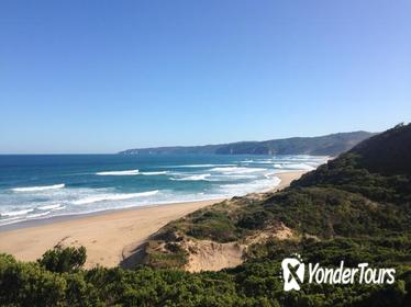 Two Day Great Ocean Road Tour