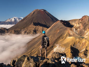 Full-Day Tongariro Alpine Crossing Guided Trek